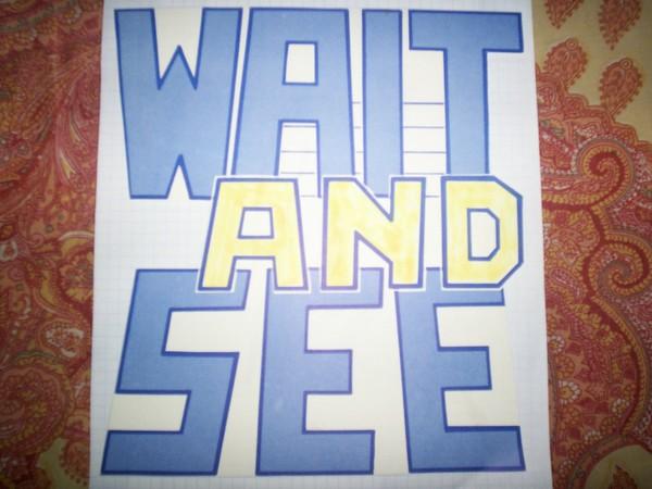 http://shmupemall.com/wp-content/uploads/2011/08/shmupemall-wait-and-see-1991.jpg