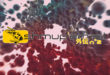 Shmup'Em-All Gaiden N°2 – Nolife : Y avait pas que la vraie vie dans la vie