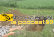 Podcast Shmup'Em-All #89 – Passion Shutterstock